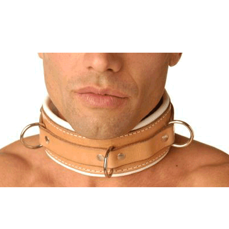 Padded Hospital Style Collar